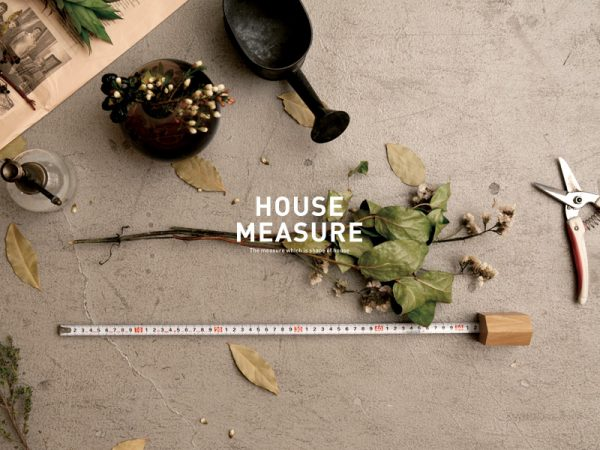 HOUSE MEASURE