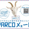 parco_mail_1