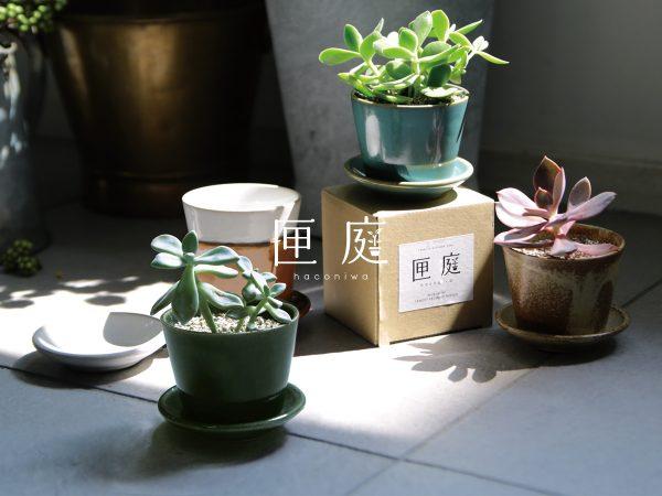 匣庭(ハコニワ)