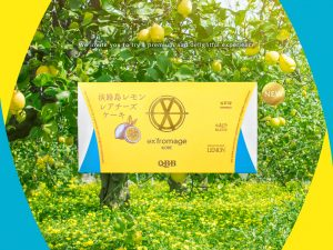 QBB ex'fromage KOBE 淡路島レモンレアチーズケーキ