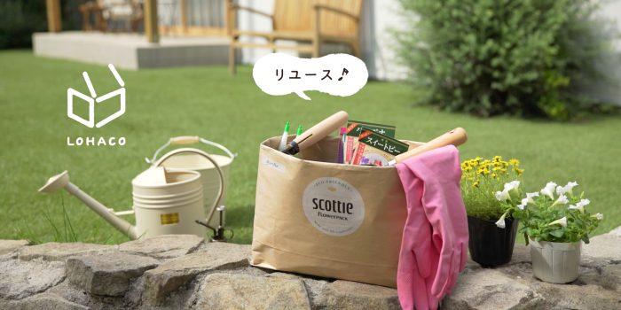 日本製紙クレシア株式会社  SCOTTIE LOHACO LIMITED DESIGN